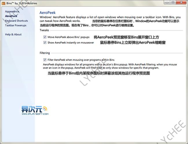Bins 设置项中文说明