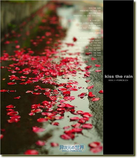 细心品味雨的心情——钢琴曲推荐 Kiss The Rain 《雨的印记》