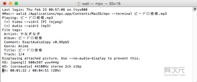 Mac 终端调用 mpv 命令行