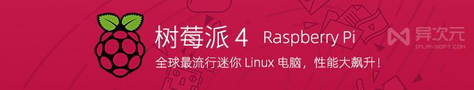 树莓派 4 代 - 全球最流行的 Linux 小型迷你电脑,性能大幅飙升!(支持4K / USB3.0)